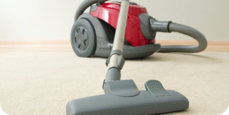 hoover domestic cleaning service